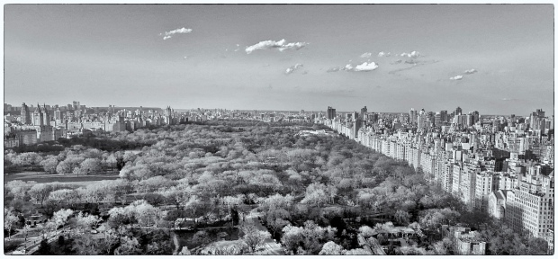View from room 4402, Park Lane Hotel, New York City.